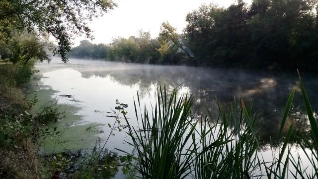Природа около Донца